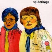 Teenage Eyes - Single by Spider Bags