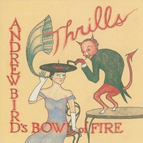 Thrills by Andrew Bird