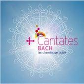 Cantates - Les chemins de la joie by Various Artists