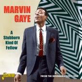 A Stubborn Kind of Fellow, From the Beginning, 1957 - 1962 de Various Artists