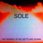 No Wising up No Settling Down de Sole