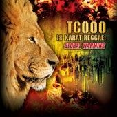 18 Karat Reggae Dancehall Ragga 2013 by Various Artists