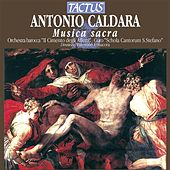 Musica sacra de Various Artists
