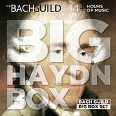 Big Haydn Box by Various Artists