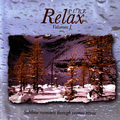 Pure Relax - Volumen 1 by Javier Martinez Maya