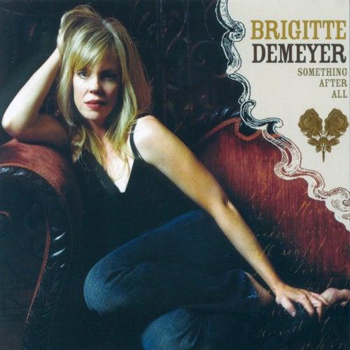 Something After All by Brigitte DeMeyer
