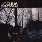Sombre Harmonie by Joshua