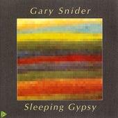 Sleeping Gypsy by Gary Snider