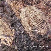 Early Man by Steve Roach