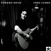 Forked Road von Ceri James