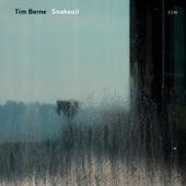 Snakeoil by Tim Berne