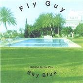 Sky Blue de Fly Guy