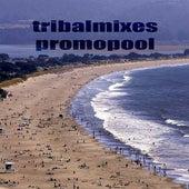 Tribalmixes Promopool de Various Artists