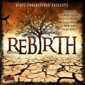 Rebirth de Various Artists