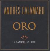 Serie Oro de Andrés Calamaro