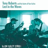 Lost in the Waves by Tony Roberts