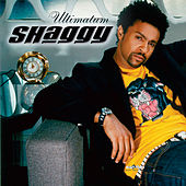 Ultimatum by Shaggy