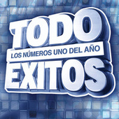Todo Éxitos 2007 de Various Artists
