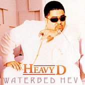 Waterbed Hev by Heavy D