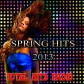 Spring Hits 2013 (Total Hits Radio) von Various Artists