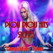 Piou Piou Hits 2013 (Compilation Tubes) von Various Artists