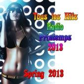 Tous Les Hits Radio Printemps 2013 (Spring 2013) von Various Artists