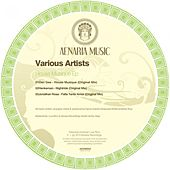 House Musique by Various Artists