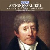 Salieri: Ouvertures, Scherzi, Divertimenti by Various Artists