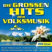 Die großen Hits der Volksmusik - Folge 1 by Various Artists