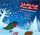 Stella Polaris - Dansk Vinterhygge #1 by Various Artists
