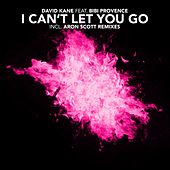 I Can't Let You Go by David Kane