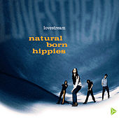 Lovestream by Natural Born Hippies