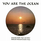 You Are The Ocean by Schawkie Roth