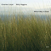 Which Way Is East by Various Artists