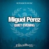 Quiet Evening - Single de Miguel Perez