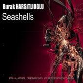 Seashells by Burak Harsitlioglu