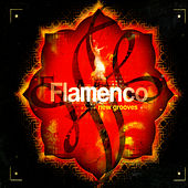 Flamenco New Grooves by Various Artists