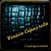 L'indispensabile de Vinicio Capossela