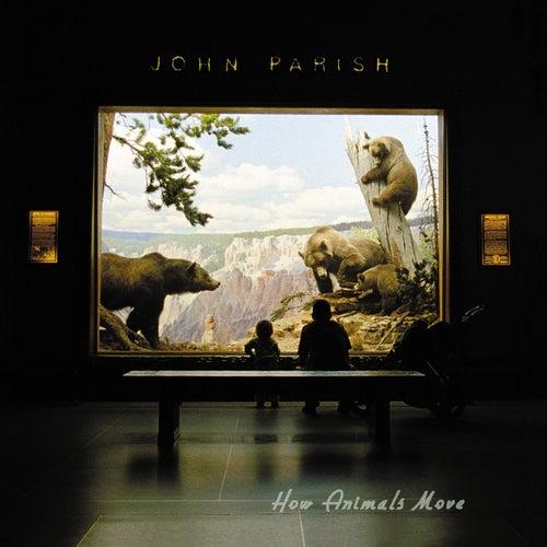 How Animals Move von PJ Harvey