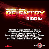 Re-Entry Riddim von Various Artists