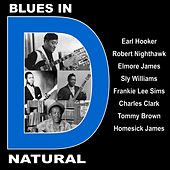 Blues in D Natural With Earl Hooker, Robert Nighthawk, Elmore James, Sly Williams, Frankie Lee Sims, Charles Clark, Tommy Brown and Homesick James de Various Artists