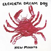 New Moodio de Eleventh Dream Day