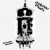 Established Videodisco von Damian J Zagorny