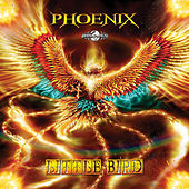 Little Bird by Phoenix