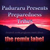 Preparedness Tribes (Deeptech Meets Proghouse Music Album) by Paduraru