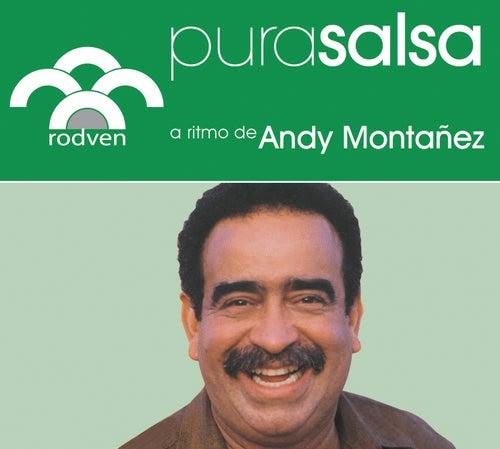Pura Salsa by Andy Montañez