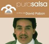 Pura Salsa by David Pabon