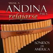 Musica Andina para Relajarse. Sonidos de América de Hermanos Mapuche