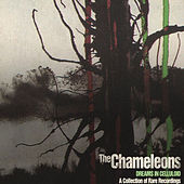 Dreams in Celluloid: A Collection of Rare Recordings by The Chameleons