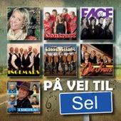 På Vei Til Sel de Various Artists